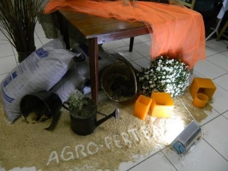 Festa Fim de Ano Agro-Pertences